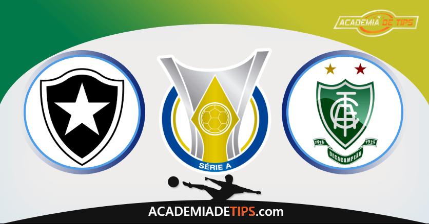 Botafogo x América MG - Prognóstico e Analise Brasileirão - Serie A