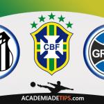 Santos x Grêmio – Prognóstico e Analise Brasileirão – Apostas Esportivas