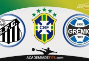 Santos x Grêmio - Prognóstico e Analise Brasileirão - Apostas Esportivas