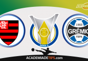 Flamengo x Grêmio , Prognóstico, Analise e Apostas Online – Brasileirão