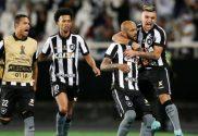 Botafogo RJ vs Avai